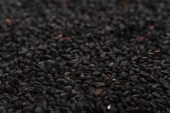 Grains of black cumin and oil on the rustic background.  Stock Photos