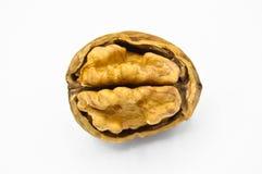 Grains bruns beiges sains et nutritifs de noix photographie stock