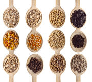 Grains and cereal food stock photos