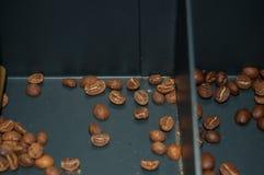 Grains of coffe Stock Photos