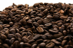 Grains of coffee. Grains of fried coffee scattered as a background with a place for record Stock Images