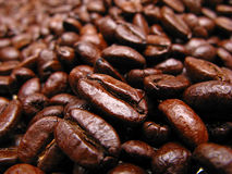 Grains  coffee. Lot of grains of coffee darkly brown color,  close up Stock Photo