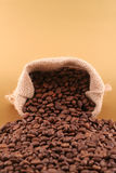 Grains of coffee. And coffee canvas bag Stock Photos
