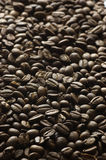 Grains of coffee Stock Photo