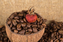 Grains of coffee aroma and invigorating drink Royalty Free Stock Photography