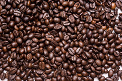 Grains of coffee background isolated on whit. E Royalty Free Stock Image