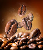 Grains of coffee Royalty Free Stock Images