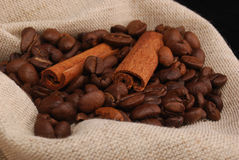 Grains of coffee and stick cinnamon Royalty Free Stock Images