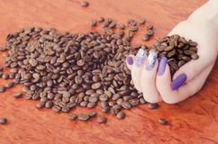 Grains of coffee are in woman hands Royalty Free Stock Images