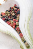 Grains of colored pepper produce fragrant. Stock Images