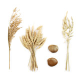 Grains composition. Grains and decorative stones composition on white background Royalty Free Stock Photography