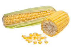 Grains of corn isolated on white Royalty Free Stock Photo
