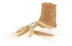 Grains de blé dans un sac Photographie stock libre de droits