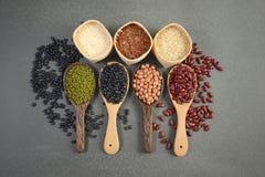 Grains de céréale et haricots de graines utiles pour la santé dans des cuillères en bois sur le fond gris Image libre de droits