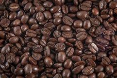 Grains de café étroits. Images libres de droits