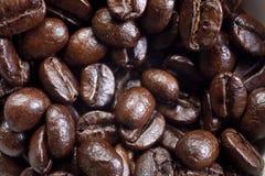 Grains de café. Photos libres de droits