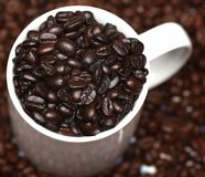 Grains de café Images stock