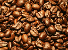 Grains de café photos libres de droits