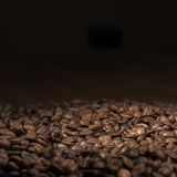Grains de café Photographie stock libre de droits