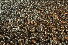 Grains de café Image stock
