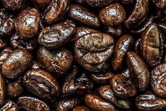 Grains de café Avant le meulage Photos stock