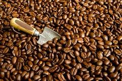 Grains de café avec la cosse images libres de droits