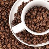 Grains de café bruns rôtis dans une tasse Image libre de droits
