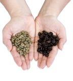 Grains de café crus et rôtis Image stock