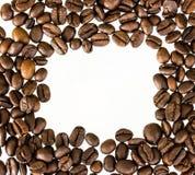 Grains de café d'isolement sur le fond blanc avec le copyspace Photographie stock libre de droits