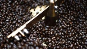 Grains de café dans la machine de grains de café de rôtissoire clips vidéos