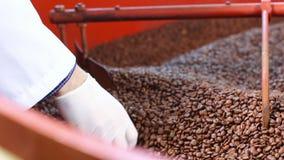 Grains de café dans la machine industrielle banque de vidéos
