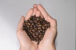 Grains de café dans la paume sur un fond clair Photo stock