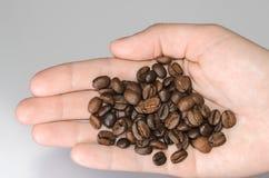 Grains de café dans la paume sur un fond clair Photos libres de droits