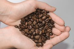 Grains de café dans la paume sur un fond clair Photographie stock