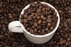 Grains de café dans la tasse Image stock