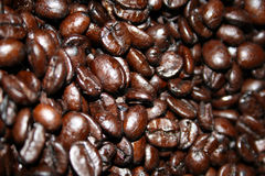 Grains de café de rôti Image libre de droits