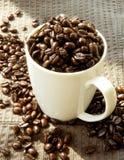 Grains de café de rôti de Français Photographie stock libre de droits