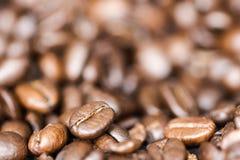 Grains de café en gros plan avec le fond brouillé Photo stock
