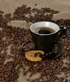 Grains de café et biscuit complet Images libres de droits
