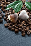 grains de café et bonbons au chocolat sur un fond foncé Image stock
