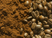 Grains de café et café de grounf Image stock