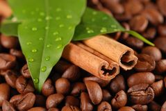 Grains de café et cannelle Photographie stock