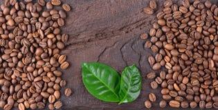 Grains de café et feuilles vertes d'usine de café sur un vieux bureau en bois Vue supérieure des grains de café avec un espace de Photographie stock libre de droits