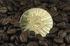 Grains de café et pièces de monnaie de bitcoin s'étendant sur le fond blanc Photos libres de droits