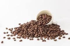 Grains de café et tasse rôtis sur le fond blanc photos stock
