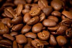 Grains de café fond, fin vers le haut Photo libre de droits