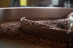 Grains de café fraîchement rôtis - plan rapproché Image stock