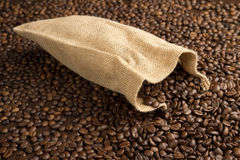grains de café frais Image libre de droits