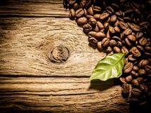 Grains de café frais de rôti sur le bois de flottage superficiel par les agents Image libre de droits