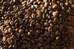 Grains de café frits Photos libres de droits